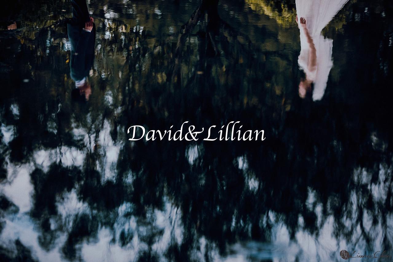 《海外婚攝》 David & Lillian / 澳洲 布里斯本